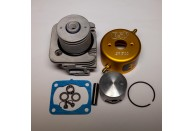 ESP CHAMPIONSHIP PORTED G290PUM 29cc 36mm Watercooled Cylinder Kit w/ Piston Mod