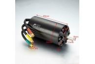 TFL Electronic SSS Brushless CNC 6-Pole Rotor Motor 5684-1000KV | Electrics